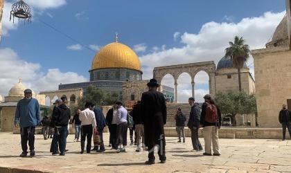 """"""" حرية """" يحذر من محاولة اقتحام المستوطنين للمسجد الأقصى في العاشر من مايو"""