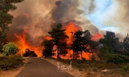 القدس: حريق هائل في مستوطنة وسلطات الاحتلال تعمل على إخماد النيران بالطائرات - صور وفيديو