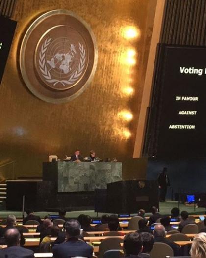 جنيف: قرارات الجمعية العامة بشأن الأوضاع الصحية في فلسطين والجولان
