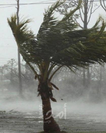 إعصار شاهين يضرب عُمان.. الشوارع تغرق ودعوةُ للسكان!- فيديو