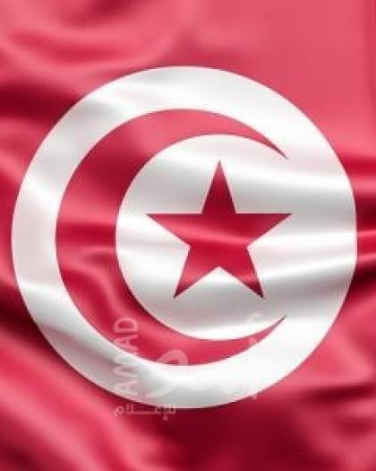 """تونس: تشكيل """"جبهة الاستفتاء"""" لتغيير النظام السياسي"""