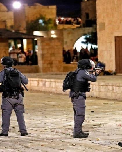 مشاهير الفن والكرة في العالم يتضامنون مع فلسطين: ما يحدث جريمة حرب